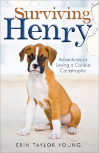 Surviving Henry image