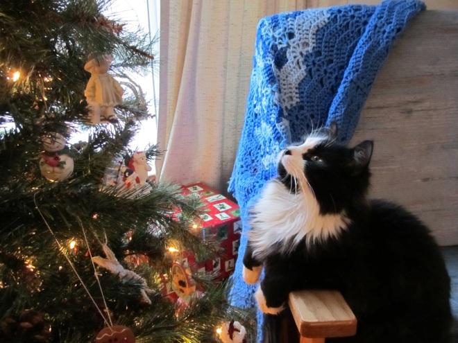 Figaro and the Christmas Tree